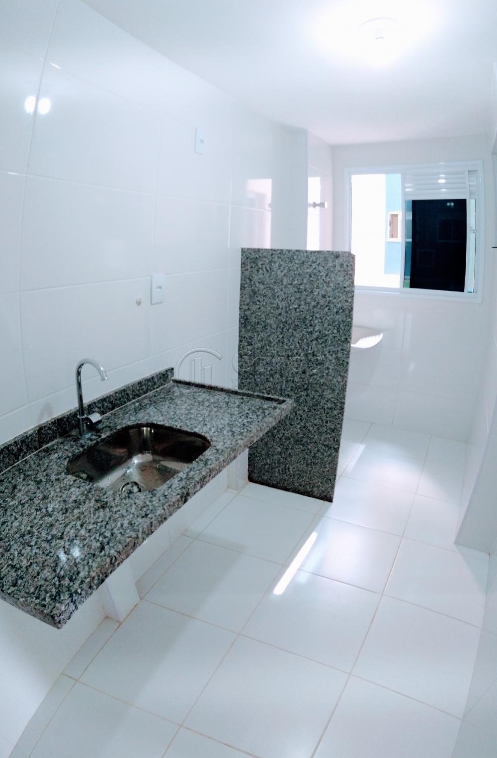 Alugar Apartamento / Padrão em São Cristóvão apenas R$ 630,00 - Foto 12
