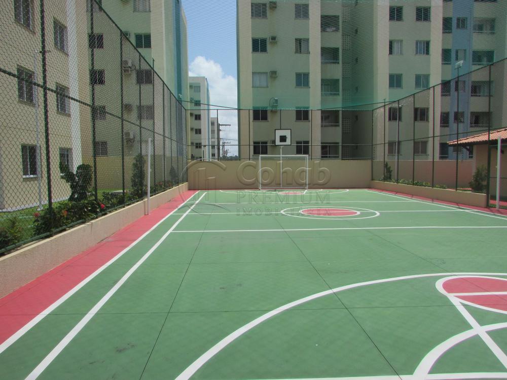 Alugar Apartamento / Padrão em São Cristóvão apenas R$ 630,00 - Foto 15