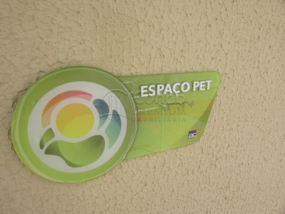 Alugar Apartamento / Padrão em São Cristóvão apenas R$ 630,00 - Foto 16