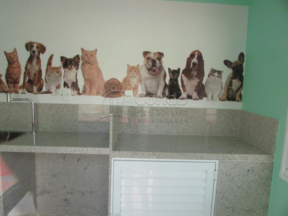 Alugar Apartamento / Padrão em São Cristóvão apenas R$ 630,00 - Foto 17