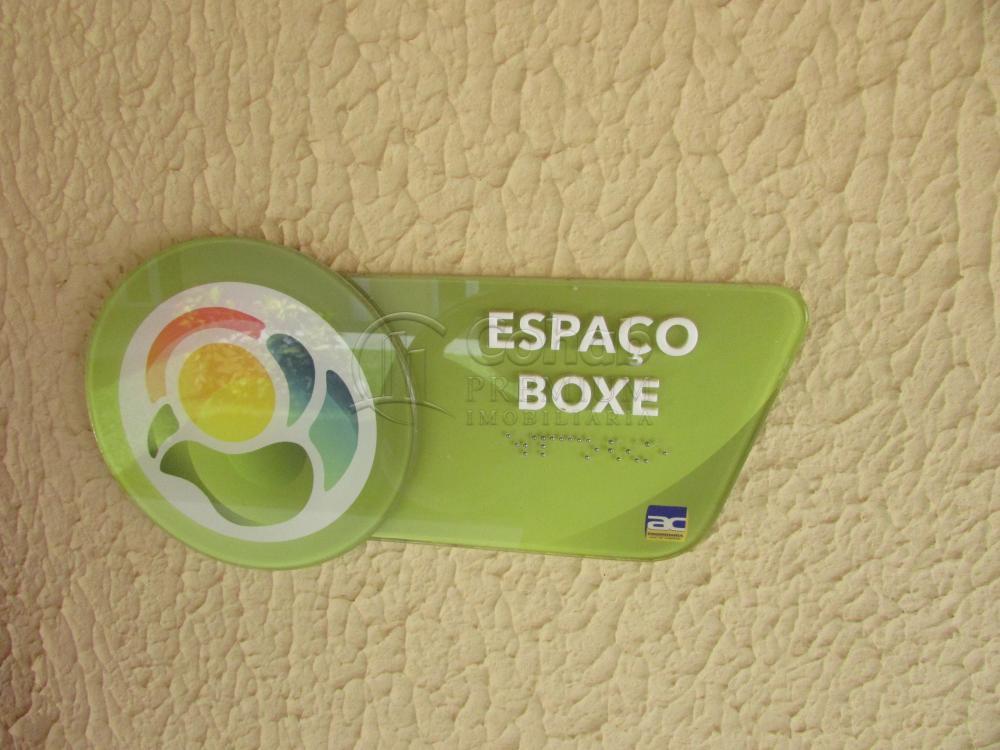 Alugar Apartamento / Padrão em São Cristóvão apenas R$ 630,00 - Foto 31