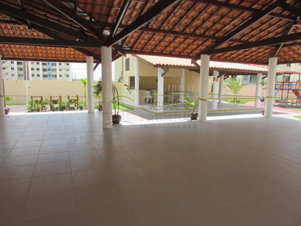 Alugar Apartamento / Padrão em São Cristóvão apenas R$ 630,00 - Foto 36