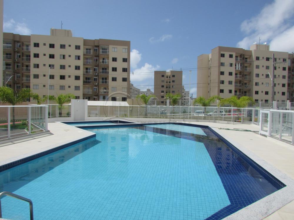 Alugar Apartamento / Padrão em São Cristóvão apenas R$ 630,00 - Foto 39