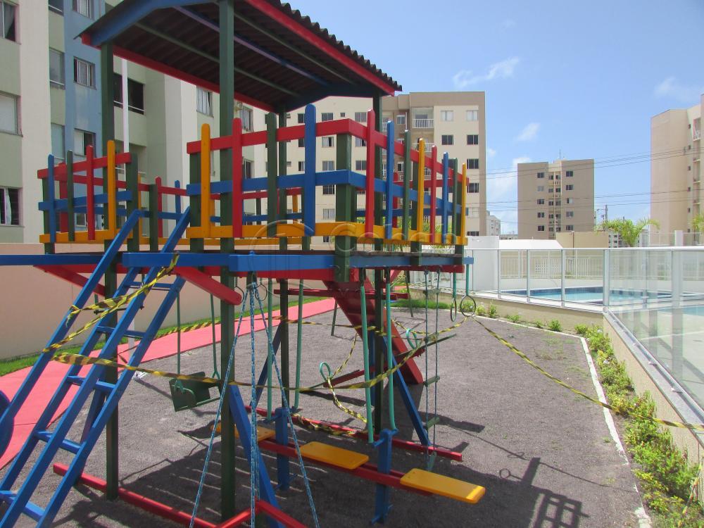 Alugar Apartamento / Padrão em São Cristóvão apenas R$ 630,00 - Foto 38