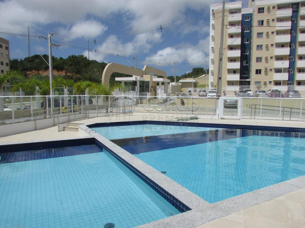 Alugar Apartamento / Padrão em São Cristóvão apenas R$ 630,00 - Foto 40
