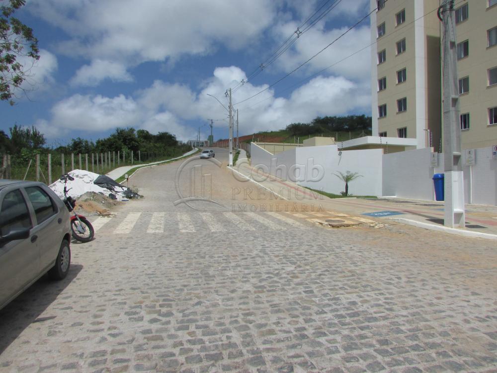 Alugar Apartamento / Padrão em São Cristóvão apenas R$ 630,00 - Foto 41