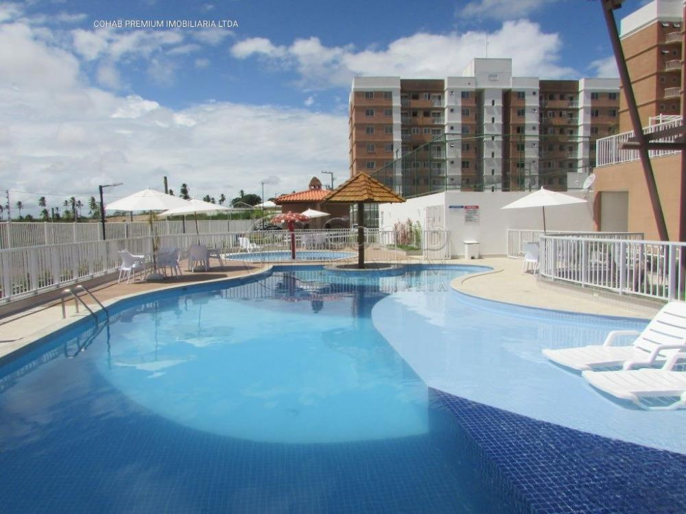Alugar Apartamento / Padrão em São Cristovão apenas R$ 500,00 - Foto 15