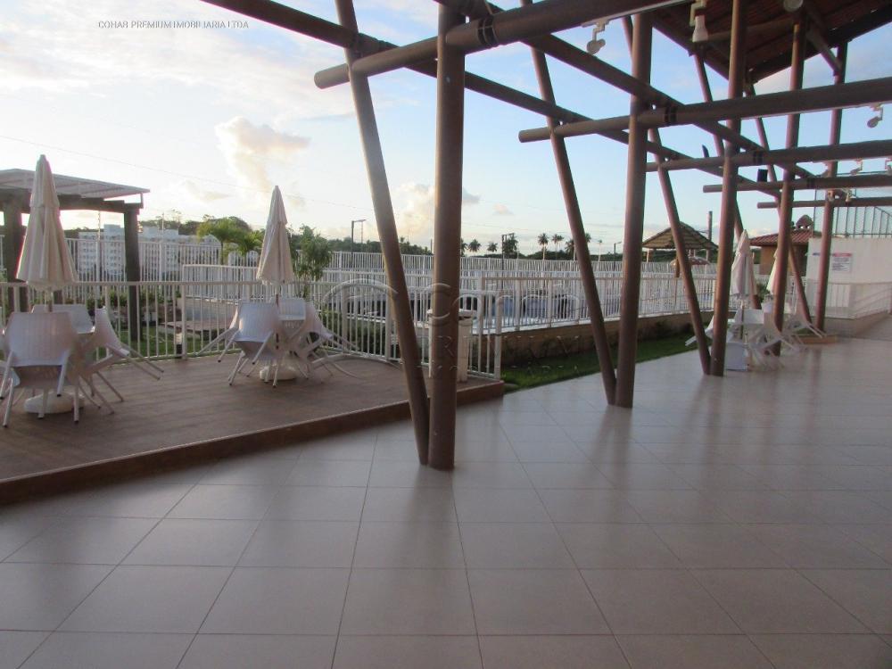 Alugar Apartamento / Padrão em São Cristovão apenas R$ 500,00 - Foto 20