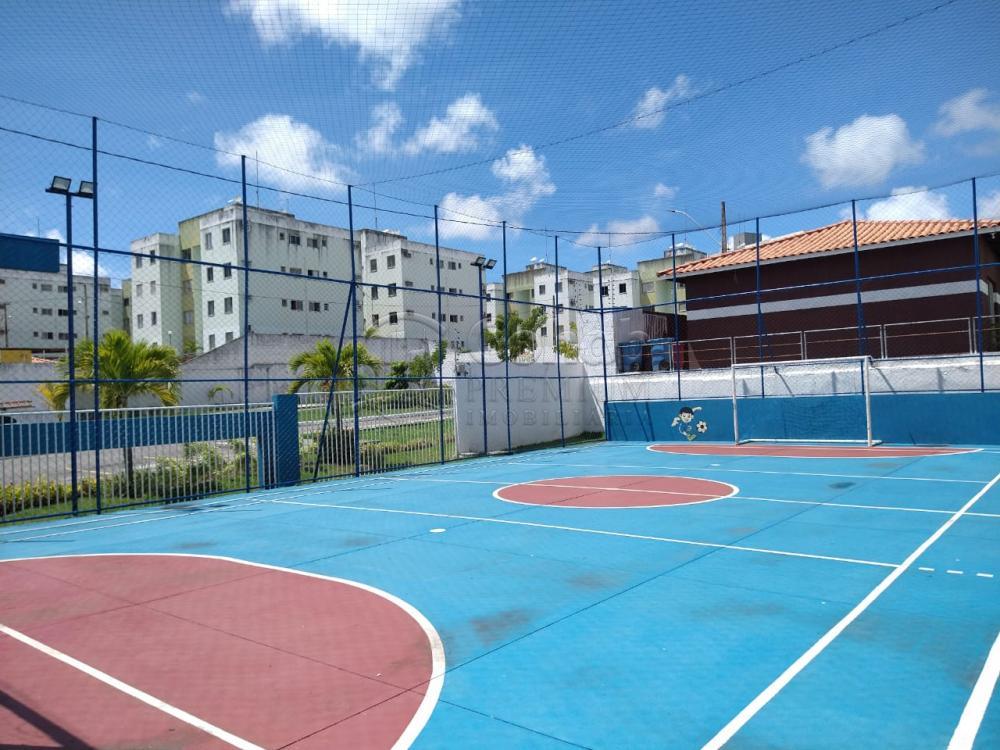 Alugar Apartamento / Padrão em São Cristóvão apenas R$ 550,00 - Foto 14