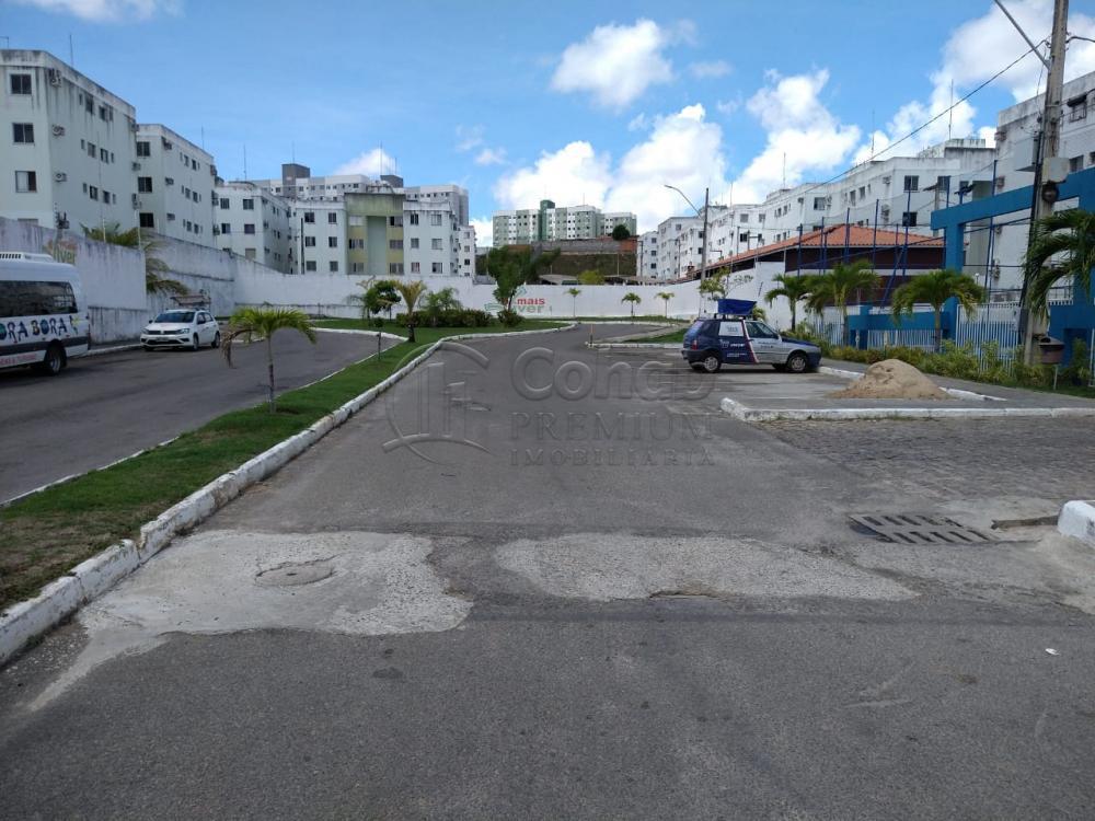 Alugar Apartamento / Padrão em São Cristóvão apenas R$ 550,00 - Foto 20